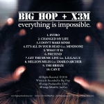 Everything-Is-Impossible-Back-WEB